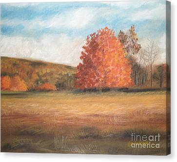 Amid The Tranquil Presence Of Change Canvas Print by Lisa Urankar