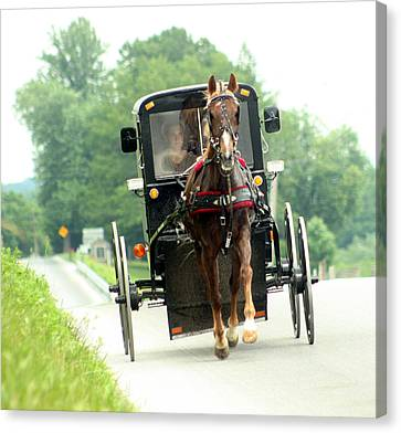 Amish Buggy On The Road Canvas Print by Emanuel Tanjala