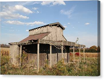 Amish Shed #3 Canvas Print by Donna Bosela
