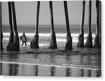 Among The Pilings Canvas Print