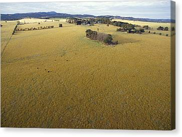 An Aerial View Of Farmland Canvas Print by Jason Edwards