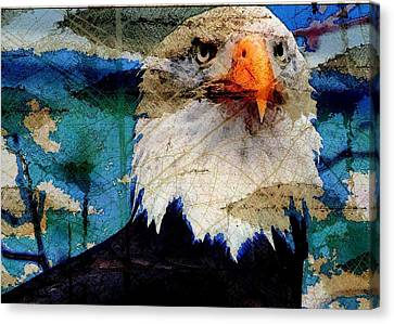 American Bald Eagle Canvas Print by Carrie OBrien Sibley