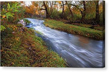 An Autumn Meandering Canvas Print by Ryan Weddle