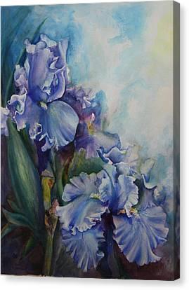 An Iris For My Love Canvas Print