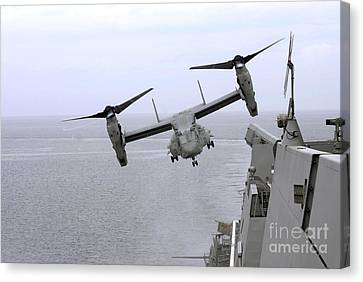 An Mv-22b Osprey Takes Canvas Print by Stocktrek Images