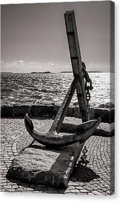 Anchor Islet Canvas Print by Ari Salmela