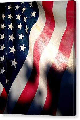 And The Flag Still Stood Canvas Print by Catherine Natalia  Roche