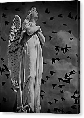 Angel Of Stone Bw Canvas Print by David Dehner