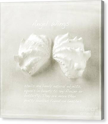 Angel Wings Canvas Print by Linde Townsend