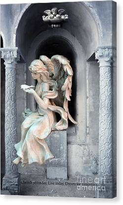 Angel With Dove Of Peace - Beautiful Angel Art Canvas Print