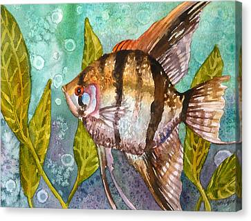 Angelfish Canvas Print by Anne Gifford