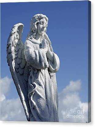 Angelic Canvas Print by Denise Pohl