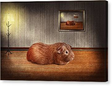 Animal - The Guinea Pig Canvas Print by Mike Savad