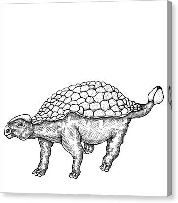 Ankylosaurus - Dinosaur Canvas Print by Karl Addison