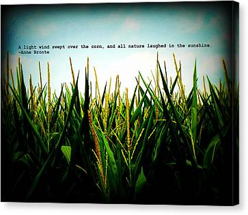 Canvas Print featuring the photograph Anne Bronte's Cornfield by Robin Dickinson