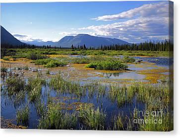 Annie Lake In Yukon Canvas Print by Charline Xia