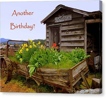 Another Birthday Antiques Canvas Print by Cindy Wright