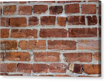 Another Brick In The Wall Canvas Print by Heidi Smith