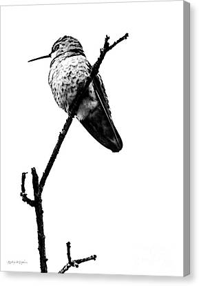 Another Little Bird Canvas Print by Rhonda Strickland
