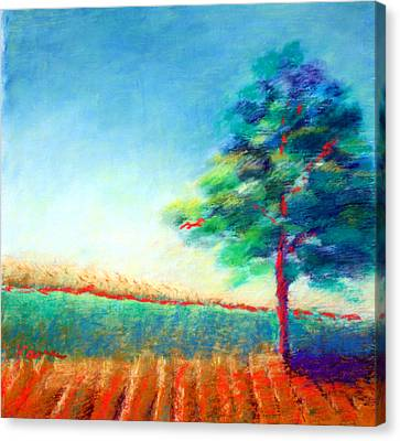 Another Tree In A Field Canvas Print by Karin Eisermann