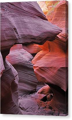 Antelope Canyon - Canvas For Nature's Compositions Canvas Print by Christine Till