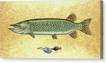 Antique Lure And Pike Canvas Print by JQ Licensing