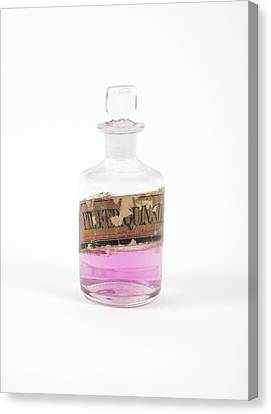 Stopper Canvas Print - Antique Medicine Bottle by Gregory Davies, Medinet Photographics