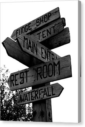 Any Which Way Canvas Print