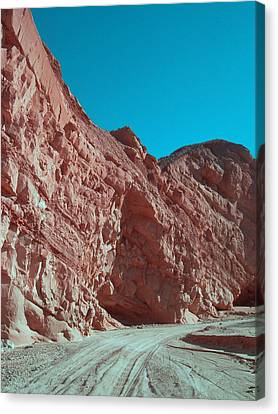 Anza Borrego Trail Canvas Print by Naxart Studio