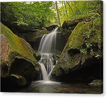 Appalachian Mountain Creek Canvas Print by Ulrich Burkhalter