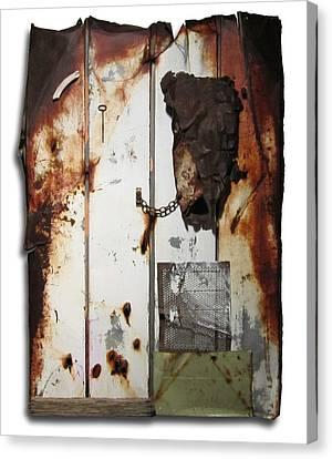 Appaloosa Canvas Print by Snake Jagger