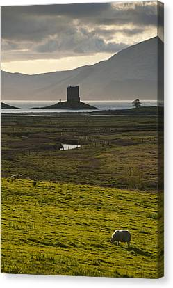 Appin, Argyll & Bute, Scotland Canvas Print by Axiom Photographic