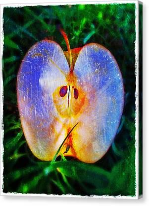 Apple 2 Canvas Print by Skip Hunt