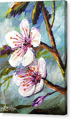 Canvas Print featuring the painting Apple Blossoms by Lou Ann Bagnall
