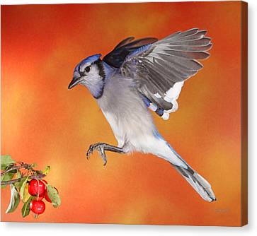 Canvas Print featuring the photograph Apple Thief by Gerry Sibell