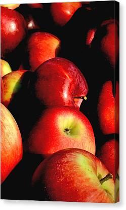 Apple Time Canvas Print by Joann Vitali