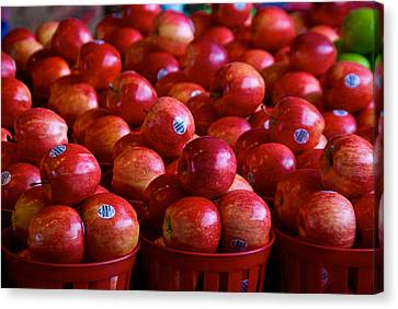 Apples Canvas Print by Mike Horvath