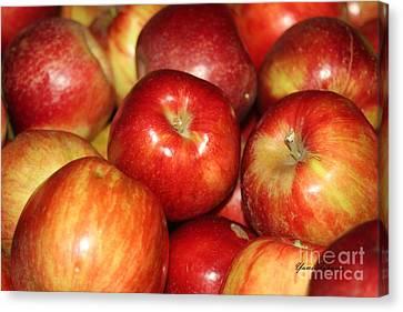 Apples Canvas Print by Yumi Johnson