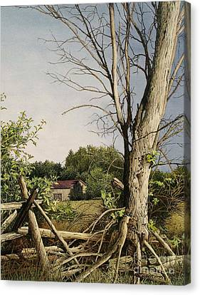 Approaching Storm Fenelon Falls Canvas Print