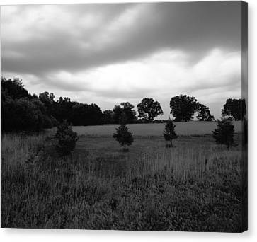 Approaching Storm Over Tree Farm Canvas Print by Jan W Faul