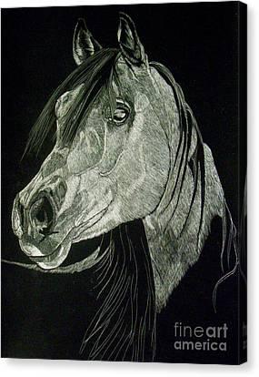 April The Horse Canvas Print by Yenni Harrison