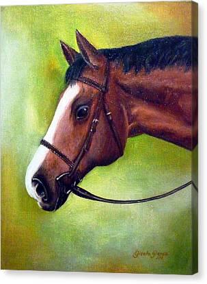 Arabian Horse Canvas Print by Gizelle Perez