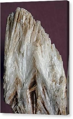 Aragonite Crystals Canvas Print by Dirk Wiersma