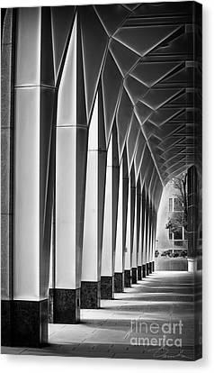 Arched Passageway Canvas Print by Danuta Bennett