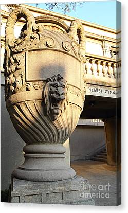 Architectural Detail . Large Urn With Lion Gargoyle  . Hearst Gym . Uc Berkeley . 7d10197 Canvas Print by Wingsdomain Art and Photography
