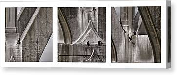 Architectural Detail Triptych Canvas Print by Carol Leigh