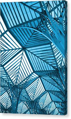 Architecture Design Canvas Print by Carlos Caetano