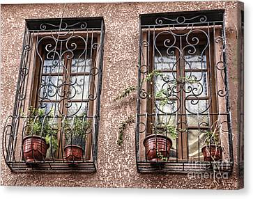 Architecture I Windows Canvas Print by Chuck Kuhn