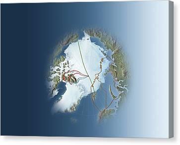 Arctic Exploration, Route Maps Canvas Print by Mikkel Juul Jensen