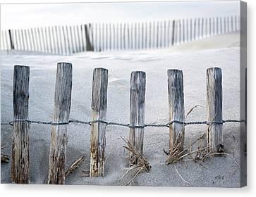Aresquiers Beach Canvas Print by Anne Petitfils